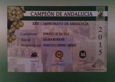 Romy029_Campeona de Andalucia
