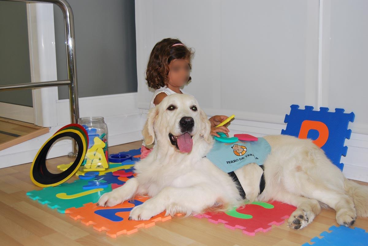 Momento de terapia asistida con animales en Gran Ayuda, psicólogos en Huelva
